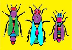 matica-postcard-single-colored-ii